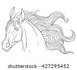 coloring book portrait of a... | Shutterstock .eps vector #427295452