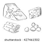 cheese types. delicious fresh... | Shutterstock .eps vector #427461502