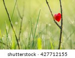 red heart in nature with...