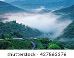 Small photo of Early morning scenery of tea gardens in fresh spring atmosphere with ethereal fog in the distant valley in Ping-ling, a rural town near Taipei, Taiwan