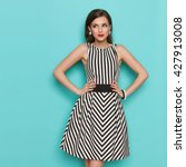 smiling elegant woman in black... | Shutterstock . vector #427913008