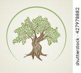 retro style olive tree vector... | Shutterstock .eps vector #427978882