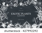 vector card or invitation with... | Shutterstock .eps vector #427992292