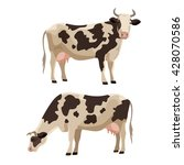 Spotted Cow Vector Illustratio...