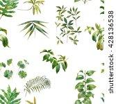 watercolor illustration of leaf ... | Shutterstock . vector #428136538