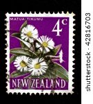 Small photo of NEW ZEALAND - CIRCA 2004: A stamp printed in New Zealand shows image of mountain daisies (Matua tikumu), series, circa 2004