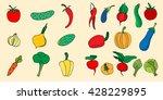 illustration set of sketch raw... | Shutterstock . vector #428229895