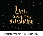 you are my sunshine inscription.... | Shutterstock .eps vector #428385802