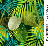 illustration of foliage... | Shutterstock .eps vector #428473138