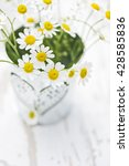 daisies in a metal pot with... | Shutterstock . vector #428585836