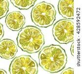 bergamot citrus fruit section... | Shutterstock . vector #428592472