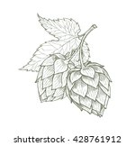 Hops Beer Vector Illustration