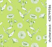 seamless vector herbal pattern... | Shutterstock .eps vector #428799586