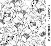 peony flower seamless line art... | Shutterstock .eps vector #428809048