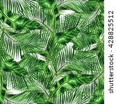 watercolor seamless pattern  ... | Shutterstock . vector #428825512