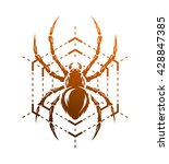 spider and web in the form of a ...   Shutterstock .eps vector #428847385