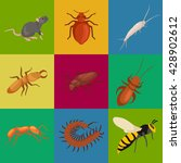 insect symbol set isolated on... | Shutterstock .eps vector #428902612