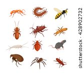 Insect Pest Set Isolated On...
