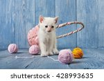 Stock photo white kitten with pink wool ball and straw basket playful white kitten sweet adorable kitten on a 428993635