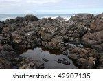 Rocky Seashore In The Pacific...