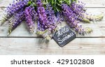 Lupine Flowers Hello Summer...