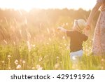 back view on a cute little... | Shutterstock . vector #429191926