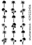 palm tree black outline... | Shutterstock . vector #429222406