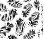 summer tropical palm tree... | Shutterstock .eps vector #429359632