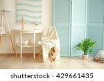 modern room design interior | Shutterstock . vector #429661435