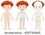little boy and skeleton... | Shutterstock .eps vector #429734065