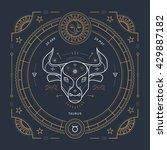 vintage thin line taurus zodiac ...   Shutterstock .eps vector #429887182