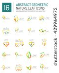 geometric leaf icon set. thin... | Shutterstock .eps vector #429964972