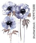 Anemones Painted With...