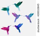 hummingbird  watercolor... | Shutterstock .eps vector #430010845
