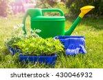 gardening tools and seedling in ... | Shutterstock . vector #430046932
