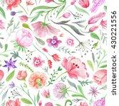 bright vintage watercolor...   Shutterstock . vector #430221556