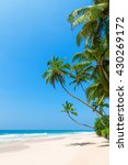 tropical beach with palm trees... | Shutterstock . vector #430269172