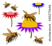 bee | Shutterstock .eps vector #430275646