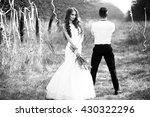 happy newlywed couple posing... | Shutterstock . vector #430322296