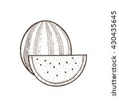 watermelon hand drawn...   Shutterstock .eps vector #430435645