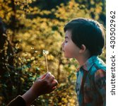 Small photo of A small boy blowing a dandelion flower during sunset in a park of Tirana, Albanian capital.