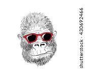 Gorilla Drawing  Gorilla Wear...