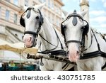 Horse Drawn Carriage  Fiacre ...