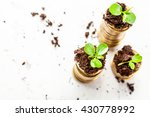 golden coins in soil with young ... | Shutterstock . vector #430778992