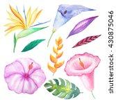 set of watercolor hand painted... | Shutterstock . vector #430875046