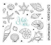 hand drawn sea shells and stars ... | Shutterstock .eps vector #430921672