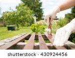 active senior woman   girl  ... | Shutterstock . vector #430924456