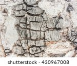 grunge and crack tree texture... | Shutterstock . vector #430967008