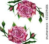 rose | Shutterstock .eps vector #431039686