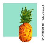 colorful summer concept... | Shutterstock .eps vector #431066116